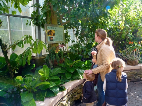 Visitors in the Fuqua Orchid Center. Photo Hilary Hart