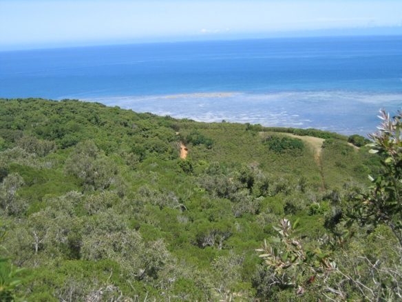 View of Ouen-Toro Provincial Park, Noumea, New Caledonia.  A military base suring World War II, it now a protected dry forest.